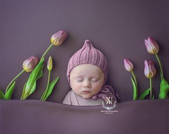Purple Tulips poppet