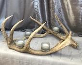 Genuine Deer Antler Cande...