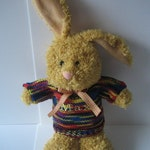 Bunny with sweater, bunny with sweater personalizable, gift, bunny sweater with Name