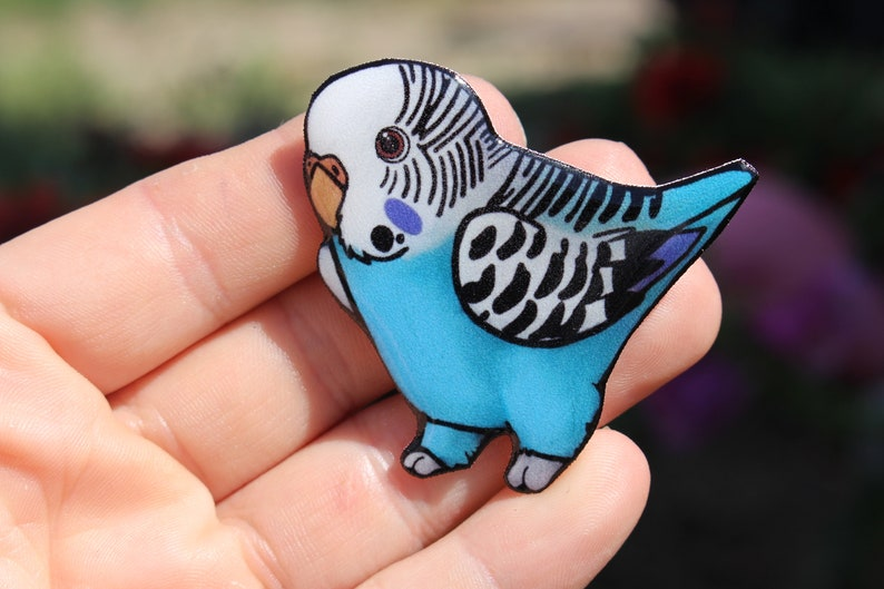Parakeet Budgie Magnet: gift for bird lovers, teacher, vet tech, zookeeper  or bird memorial cute animal magnets for locker or fridge