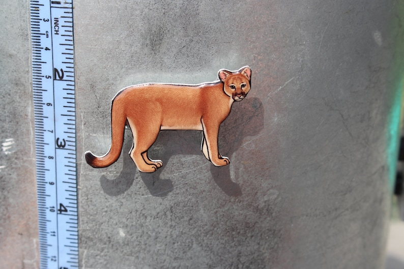 29fc602d242c1 Cougar Mountain lion Puma Magnet: Gift for cat lovers and big cat watchers  cute cat animal magnets for car locker or fridge
