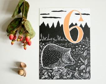 Happy Birthday postcard hedgehog, animal illustration, sixth birthday