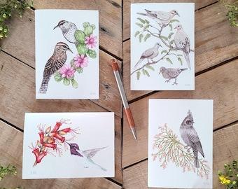 Pollinator Birds Notecards, Desert Pollinator Illustration Cards, Bird Greeting cards, watercolor Illustration cards, Wren Dove Hummingbird