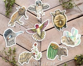 Desert Fauna Stickers, Animal Stickers, Cute Vinyl Critter Stickers, Nature Art, javelina, horned lizard, kestrel, jackrabbit, roadrunner