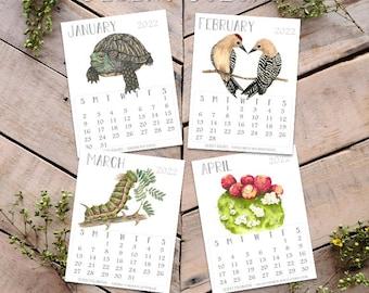 2022 Desert Colors Calendar, Science and Art Illustration, Sonoran Desert Wildlife art, Handmade Wood block Stand