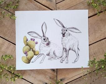 Candid Jackrabbits Art Print, humorful art, rabbit comic, scientific illustration, desert wildlife humor, funny bunny Print