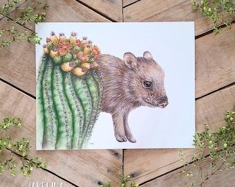 Javelina and Barrel Cactus Art Print, Natural Science Illustration, botanical wildlife art, Cute javelina, Baby Desert Animal, Desert Art