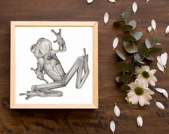 With Love, Glass Frog - Scientific Illustration  - Beating Heart of an Ecuadorian Glass Frog- Ink, Watercolor & Graphite