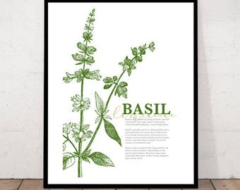 Basil, kitchen wall art, herbs print, basil, herb prints, kitchen wall decor, herb