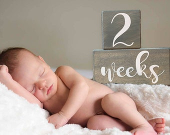LARGE Milestone Blocks, Baby Age Blocks, Baby Month Blocks, Baby Age Blocks, Baby Shower Gift, Photo Blocks, Photo Prop