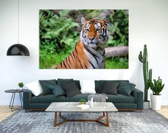 Tiger Picture Print Canvas, Tiger Face Print, Tiger Decoration for Room, Big Cat Pictures Art, Tiger Large Art, Wild Cat Artwork
