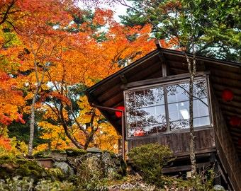 Japan Tea House, Canvas Fall Photos, Autumn Foliage, Fall Decor Ideas, Red Maple Leaves, Office Decor Print, Fall Home Wallpaper