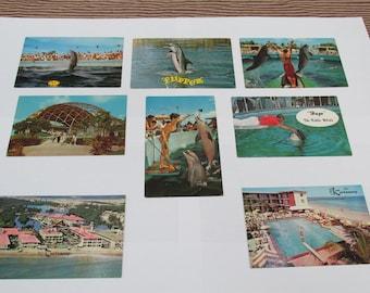Vintage Lot of Miami's Fabulous Seaquarium Postcards/The Castaways Miami Beach/Miami Florida Postcards/Epherma