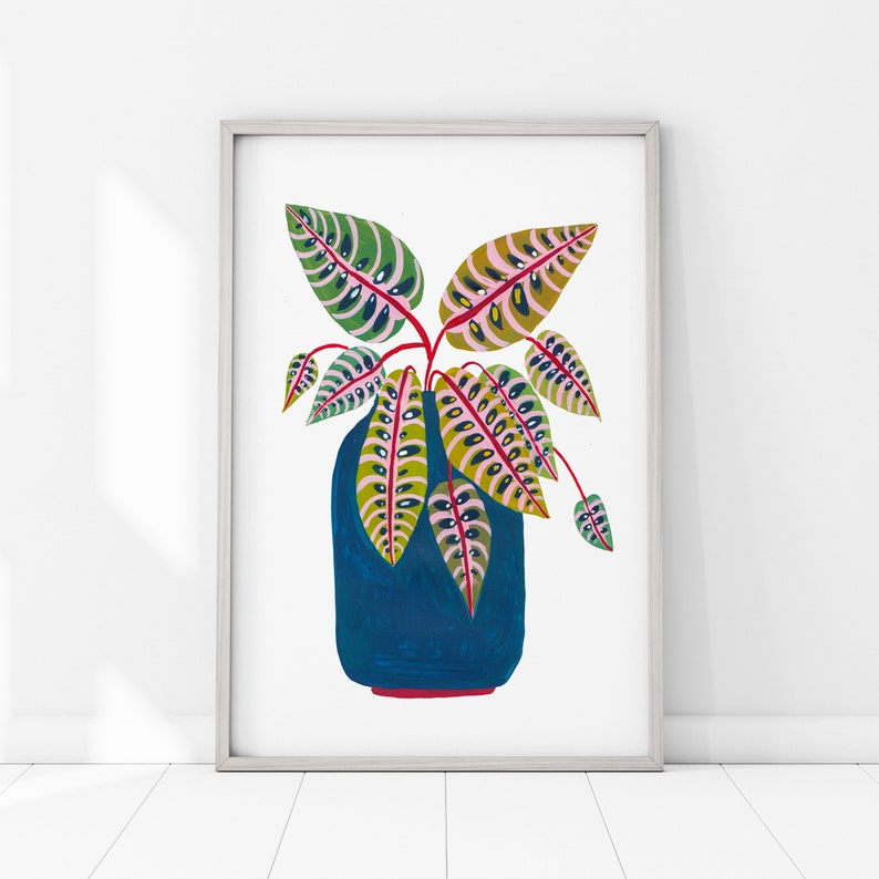 Botanical Print / Prayer Plant / Botanical Illustration / Home image 0