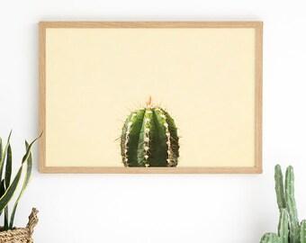Yellow Cactus Wall Art - Cactus Print - Cactus Art Ideas - Teen Room Decor - Teenage Girl Room - Cactus Photography - Cactus Wall Art Print