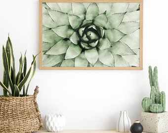 Cactus Wall Art - Cactus Print - Cactus Art Ideas - Succulent - Cactus Kitchen Decor - Cactus Artwork - Cacti Art - Cactus Photography