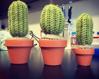 Traditional Crocheted Cactus