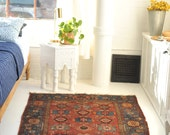 3.11 x 6 Colorful and Cheerful Village Antique Rug Charlie