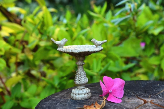 Miniature Enchanted Fairy Garden Birdbath Or Flower Box | Etsy