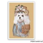 Maltese. The Beauty / Dog Art Print / Royal Dog Art Gallery of Animal Century