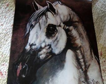 Beautiful White Stallion Horse Print
