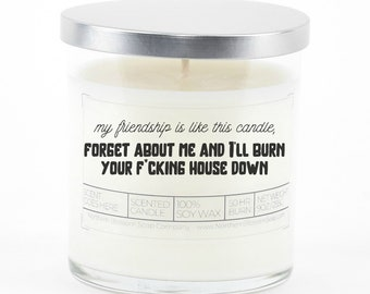 My Friendship Is Like This Candle Soy Candle
