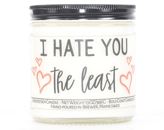 I Hate You the Least, Funny Valentine's Day Gift for Her or Him, Personalized Anniversary Gift for Boyfriend, Couples Gift, Best Friend Gift