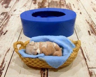 Silicone mould Sleeping CatFood Use FPC Sugarcraft FREE UK shipping!