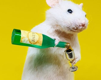 Taxidermy Mouse with WHITE WINE ~ oddities, curio, curiosities