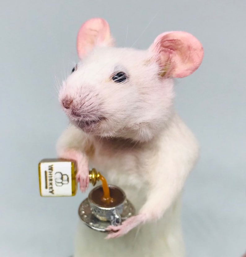 Taxidermy Mouse with WHISKEY and teacup  oddities curio image 0