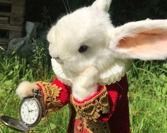 Taxidermy Alice in Wonderland White Rabbit ~ oddities, curio, curiosities