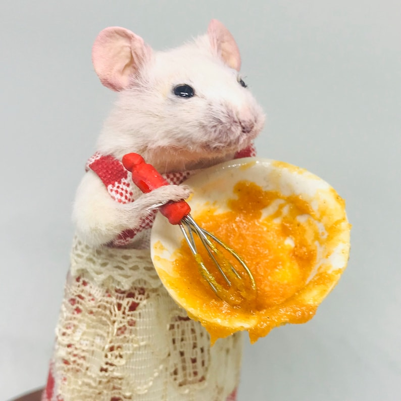 Taxidermy mouse baking cooking in gingham dress  oddities image 0