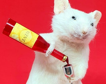 Taxidermy Mouse with RED WINE ~ oddities, curio, curiosities