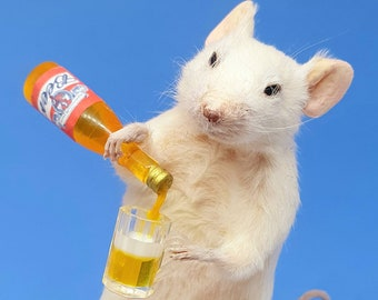 Taxidermy Mouse with BEER ~ oddities, curio, curiosities