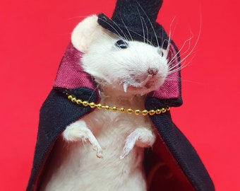 Taxidermy mouse, Dracula, Vampire ~ oddities, curio, curiosities