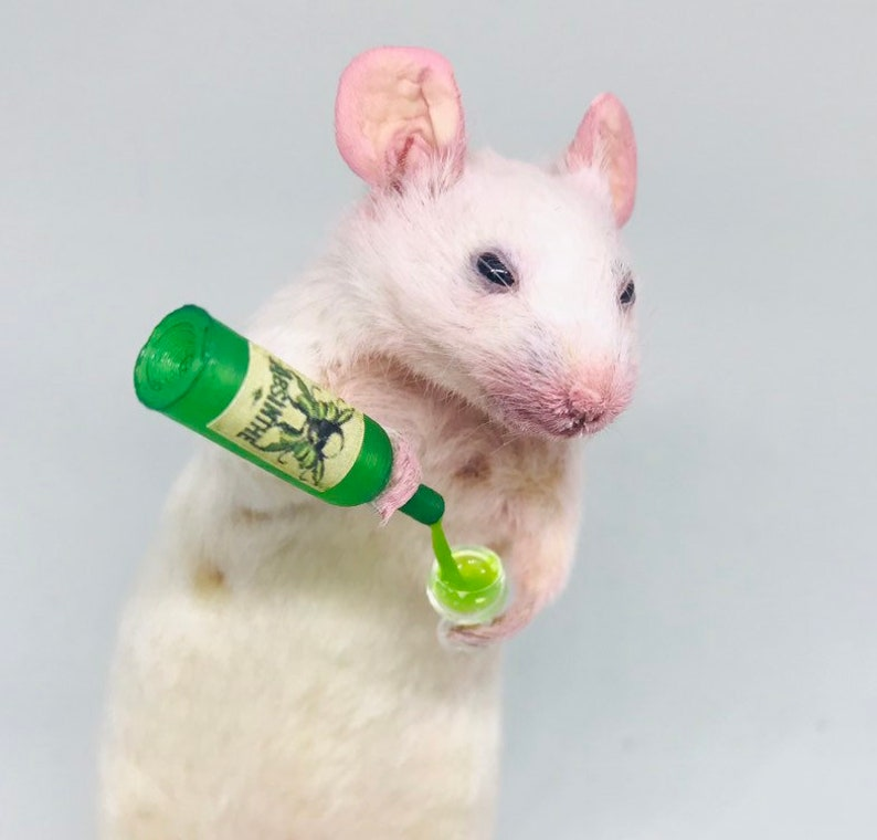 Taxidermy mouse with ABSINTHE and glass  oddities curio image 0