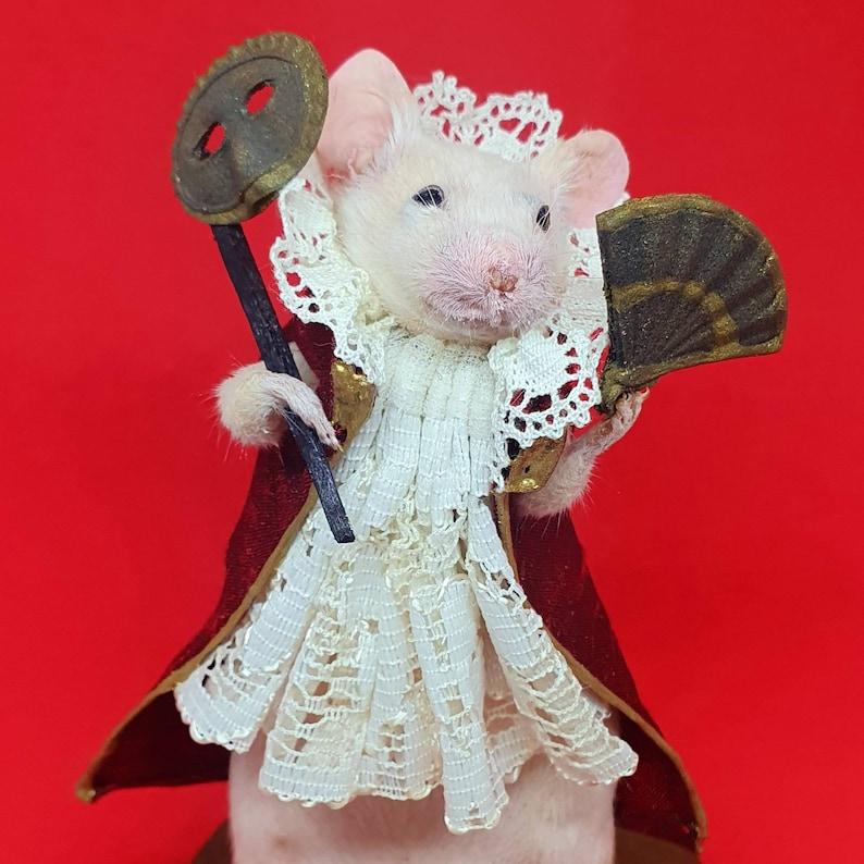 Taxidermy mouse masquerade  oddities curio curiosities image 0