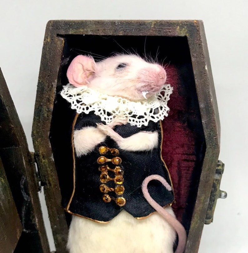 Taxidermy mouse Dracula in coffin with sound effects image 0