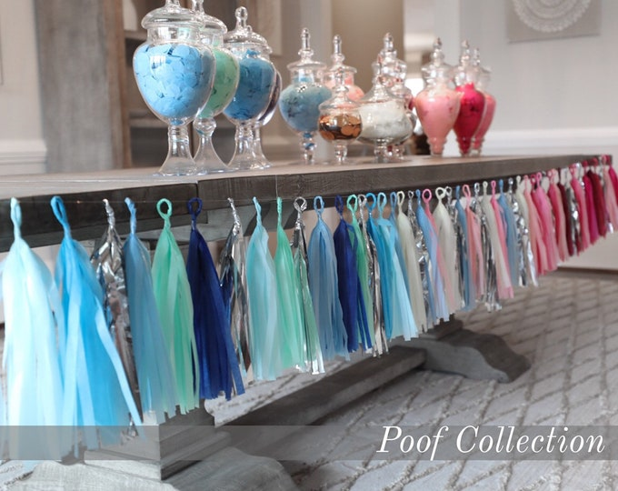 Designer Garland Gender Reveal Tassel Banner from the Poof Collection™ By Tori & Jon™ Perfect Gender Reveal Decor in New Combinations