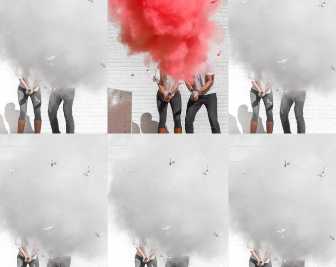 """24"""" Cannon Roulette for Gender Reveals in Smoke Powder Cannons or Confetti Cannons!  Gender Reveal Idea! Holi Powder Pink Blue and White"""