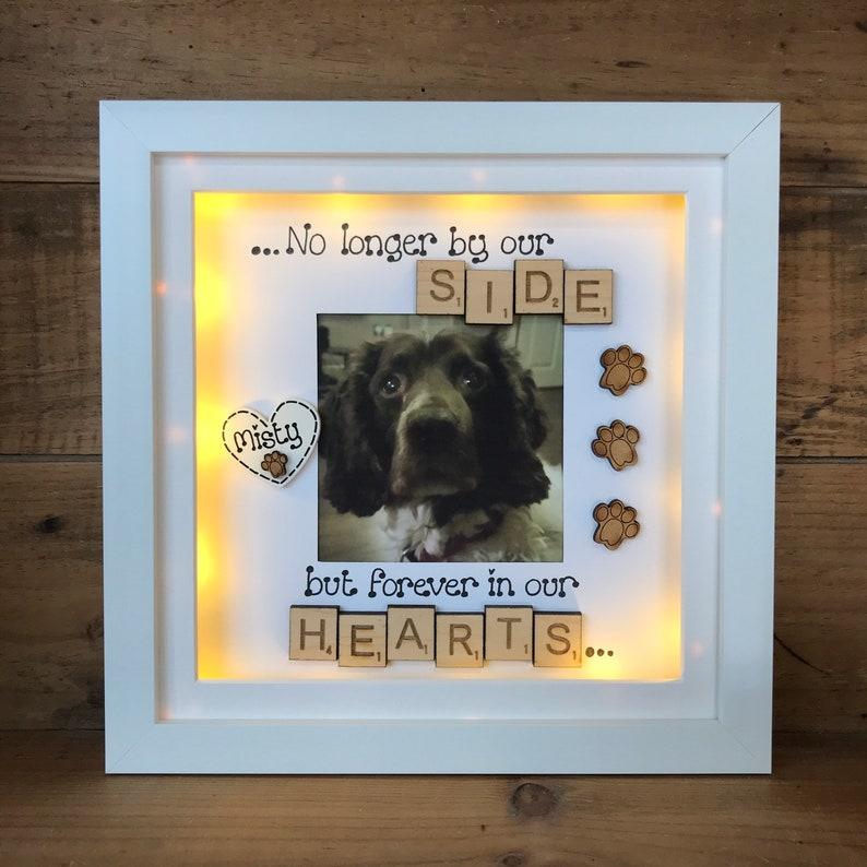 LED light box frame pets memorial bereavement cats rainbow bridge dogs in memory keepsake frame