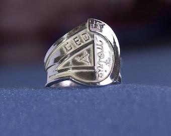 Asymmetrical ring fantasy geometries of life
