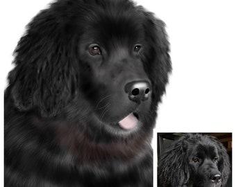 Custom Pet Portrait (Digital Download)
