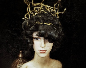"Costume Accessories Set ""Medusa"" Wig and Headpiece, Snake Headband, Costume Fantasy Set Medusa Wig and Hair Rent/MADE TO ORDER"