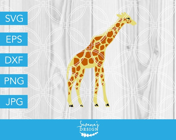 Giraffe Svg Animal Svg Zoo Svg Africa Svg Baby Svg Etsy
