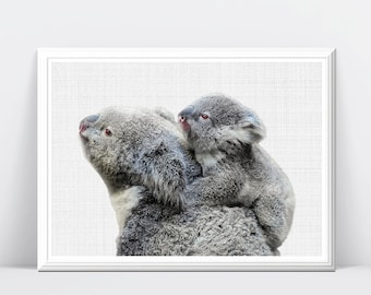 Koala Wall Print, Koala Poster, Baby Koala, Nursery Koala, Animal Print, Nursery Wall Art, Nursery Print, Nursery Decor, Nursery Animal Art