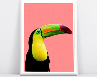 Toucan Bird, Bird Print, Tropical Parrot Wall Art, Tropical Decor, Printable Art, Colourful Bright, Pink Black Yellow, Bird Photography