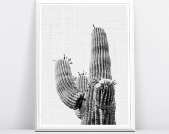 Cactus Print, Black and White Wall Art, Modern Minimalist Contemporary, South Western Decor, Large Printable Poster, Digital Download
