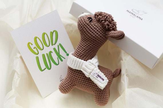 Good Luck No Reason Friend Cheer Up Support Gift Box Idea Pregnancy Present Basket With Crochet Brown Llama Stuffed Nursery Decor Toy Set