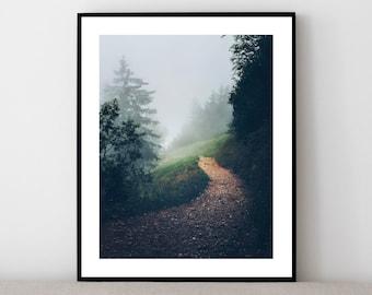 "Natur Poster ""Into the woods"" | gedrucktes Bild in A4, A3 | Schweiz Poster, Landschaft Wald in den Schweizer Alpen, Wohndekor Wandbild"